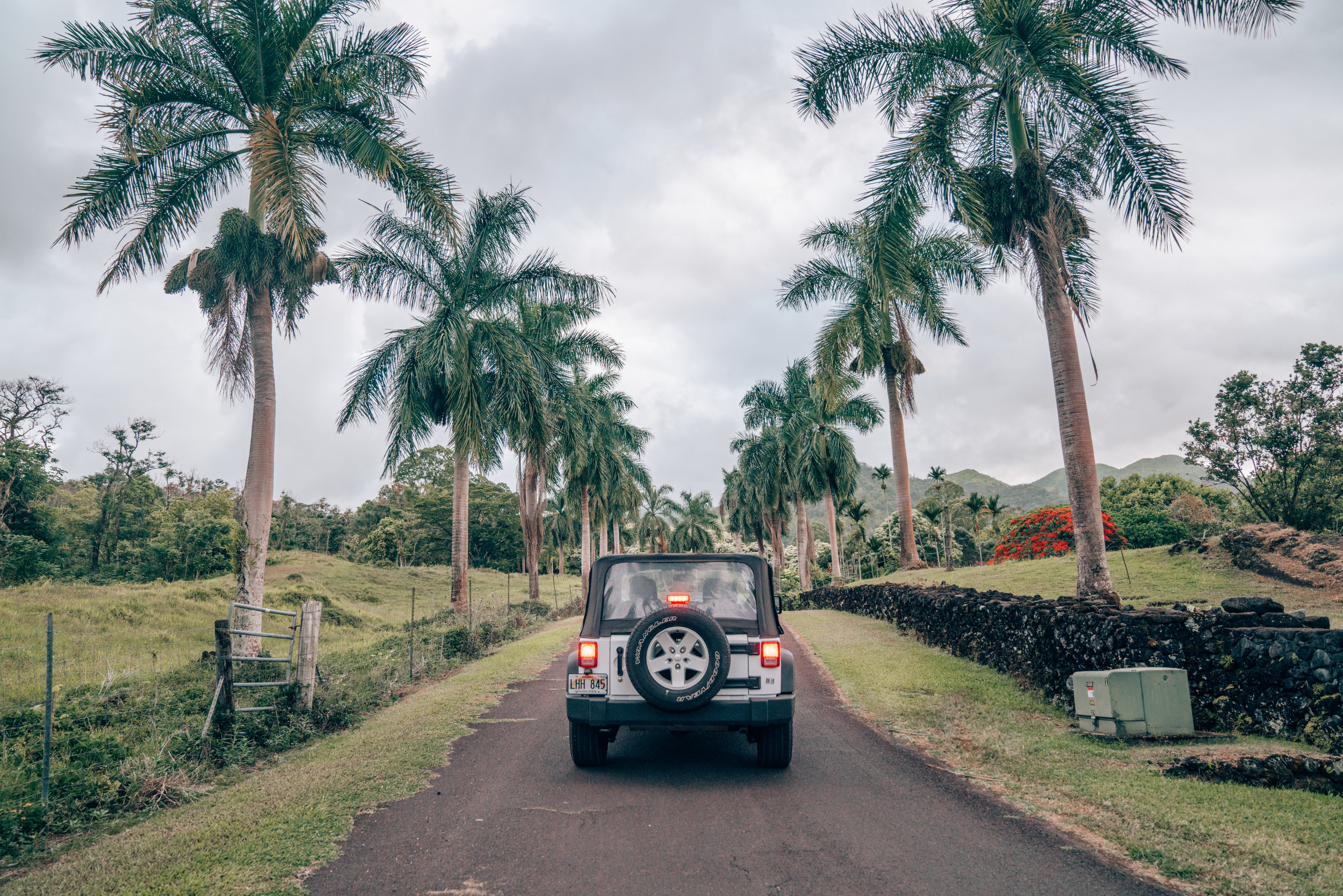 Riding in a Jeep on the Road to Hana