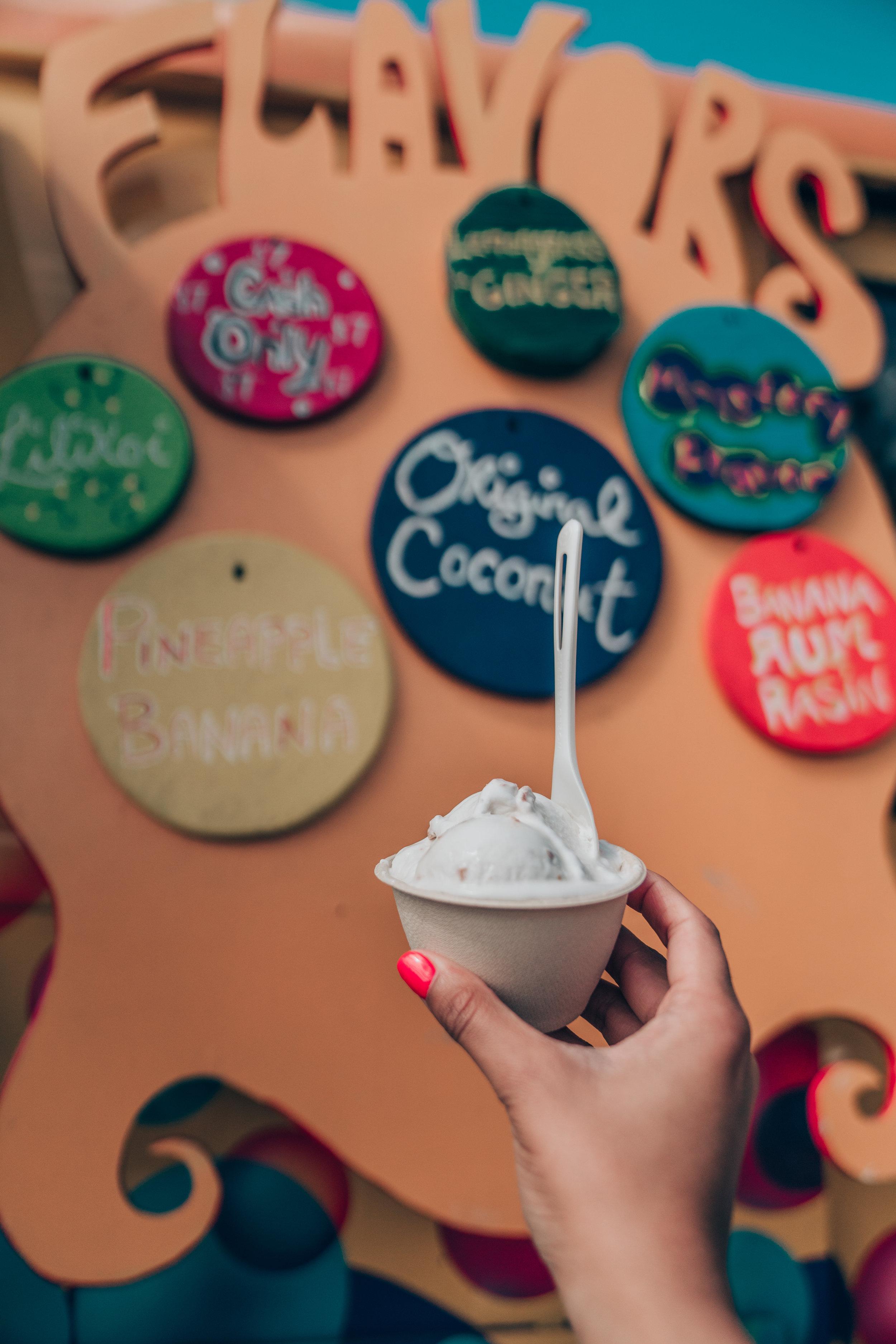 Coconut Glen's Ice Cream - Road to Hana Maui