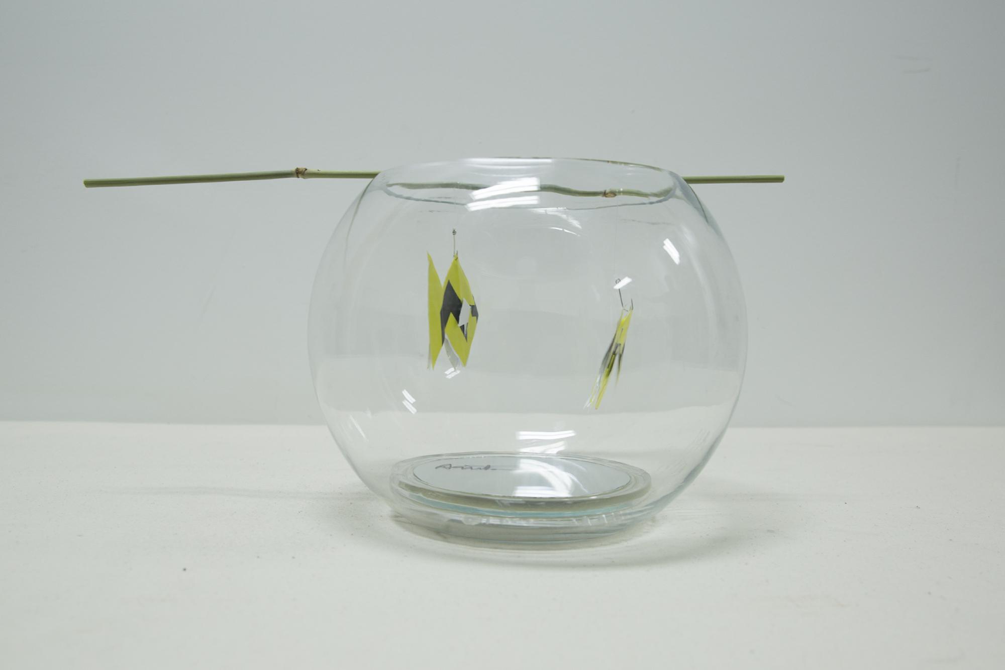 Fish Bowl 2.jpg