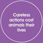 careless-actions.jpg