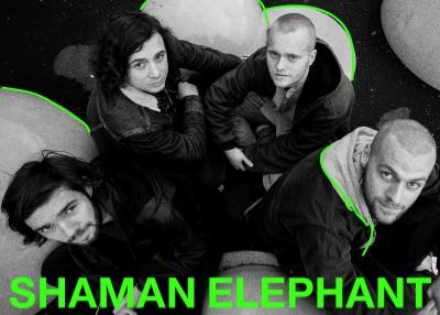 Shaman Elephant er et psykedelisk progrock-band fra Bergen. Bandet ble etablert i 2014 og har siden da spilt en rekke konserter, gitt ut EP og jobber nå med sin debutplate som kommer høsten 2016 på Karisma Records.