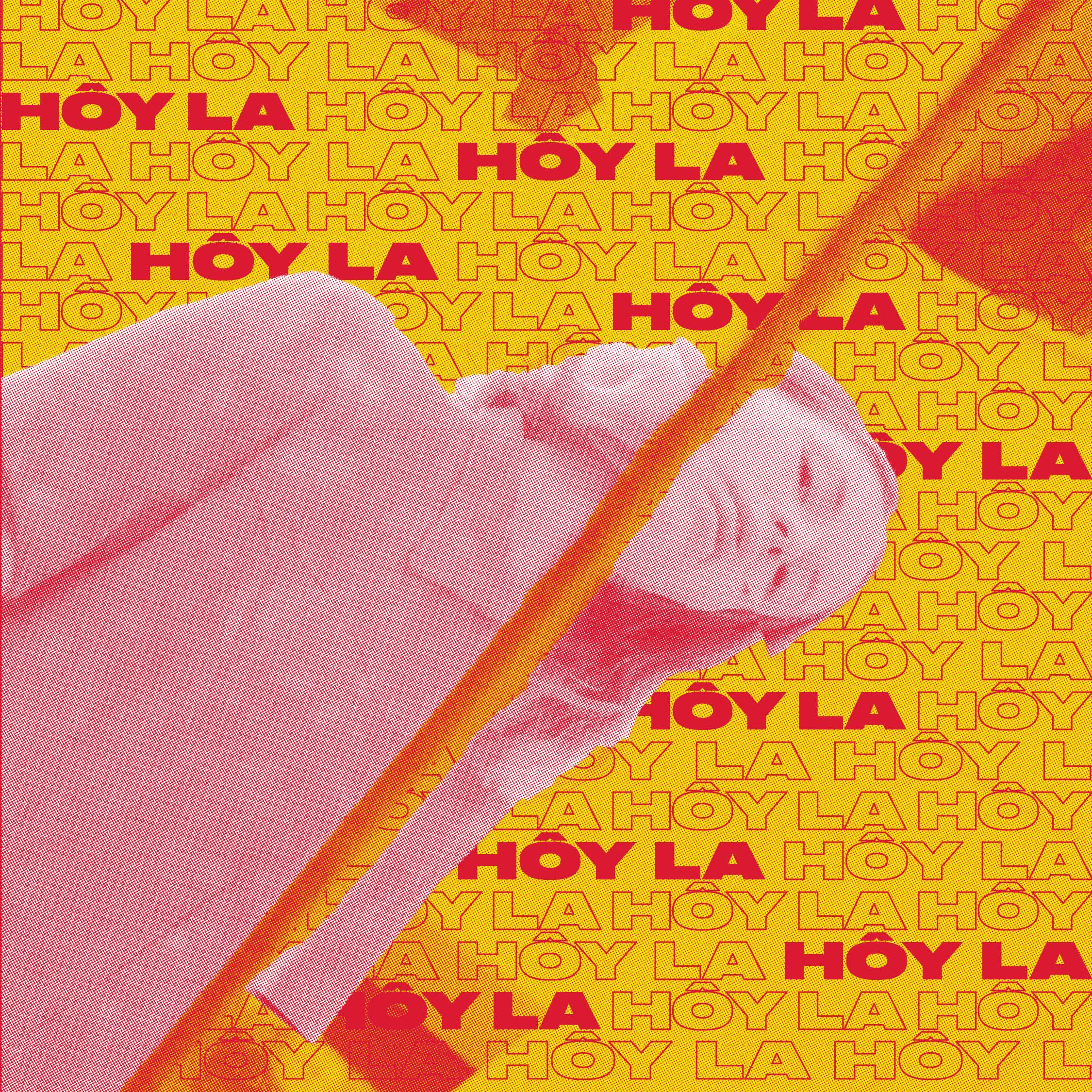 Ingri Høyland Kvamstad (Hôy la) eksperimenterer med organiske live loops, elektroniske flater og akustiske elementer i sin produksjon. Musikken fusjonerer elementer fra forskjellige sjangre som electronika, trip hop og alternativ rock. I dette univers skaper Ingri Kvamstad's vokal en nærhet som uttrykker melankoli og et tekstunivers som åpner for følelsesladet konfrontasjon. Hennes nyeste single «Please» har fått mye oppmerksomhet blant skandinaviske og internasjonale medier og er flere steder blitt omtalt som 'en å holde øye med I 2018.