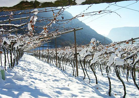 Castelfeder snow shot.jpg