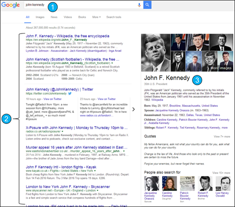 Figure 2:    Anatomy of a Google search. 1) Search term; 2) a list of 'hits' that match the search term; 3) Knowledge Graph an aggregation of data from across the web about the thing search for.