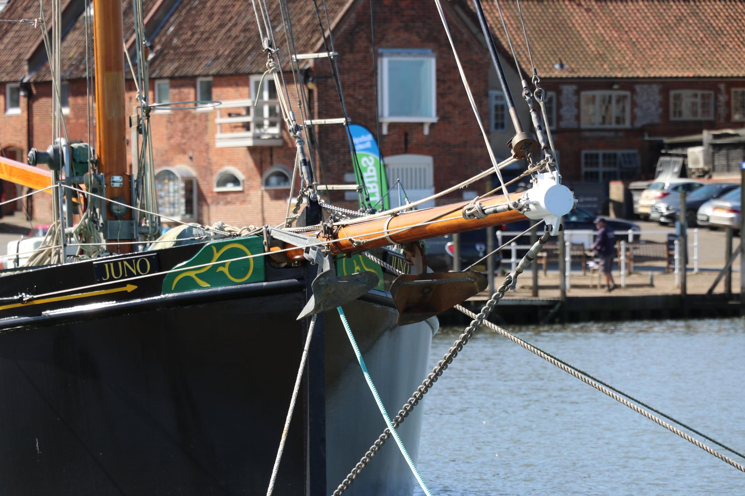 Juno at Blakeney Harbour, May 2018