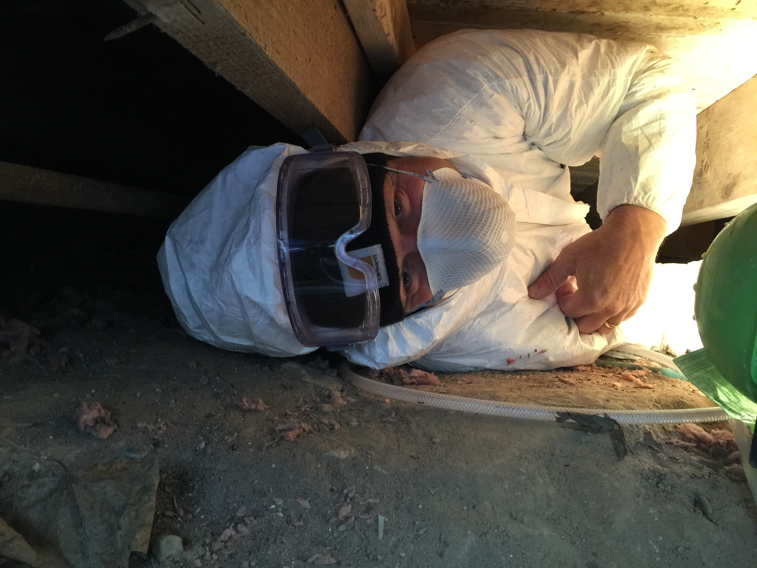 Crawl Space Mold Remediation