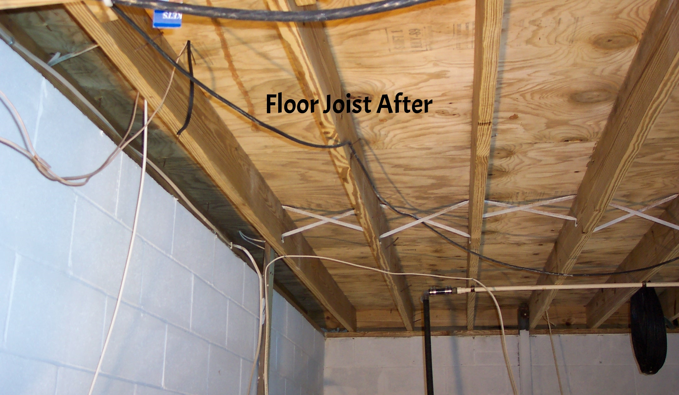 Basement Mold Removal After