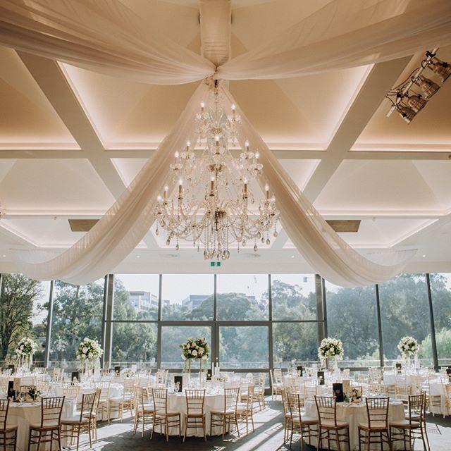 @Leondabytheyarra bathed by this amazing light! {Quinn + Jamal} by #blwalex . . . . . . . #weddingphotography #weddingphotographer #weddinginspo#melbourneweddingphotographer #melbournewedding #melbourneweddingphotography#melbournebride