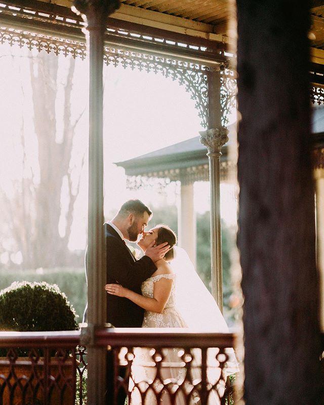 Beautiful sunshine at @ascothouse {Deniz + Glenn} by #blwwill . . . . . . . #melbournewedding #melbourneweddingphotography #weddinginspo #weddingday #weddingplanner #bride #bridestyle #weddinginspiration #weddingideas #engaged #instawedding #moments