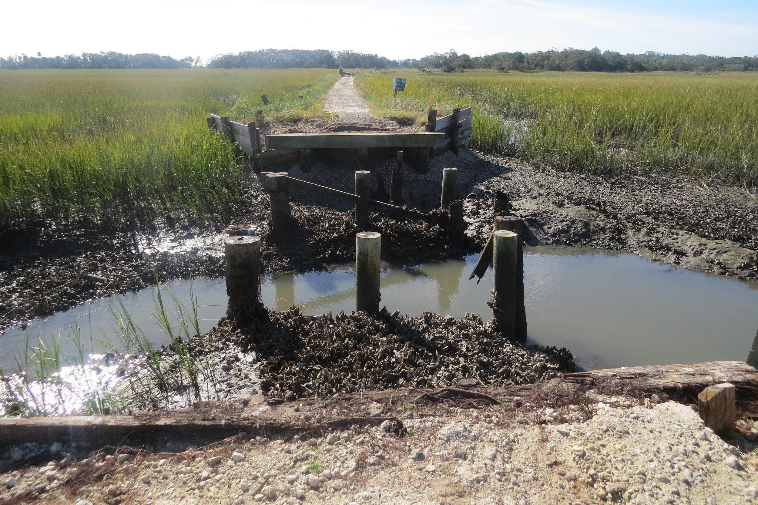 The bridge leading to Botany Bay Plantation's beach access was a casualty of Hurricane Matthew. (Photo: Bess Kellett)