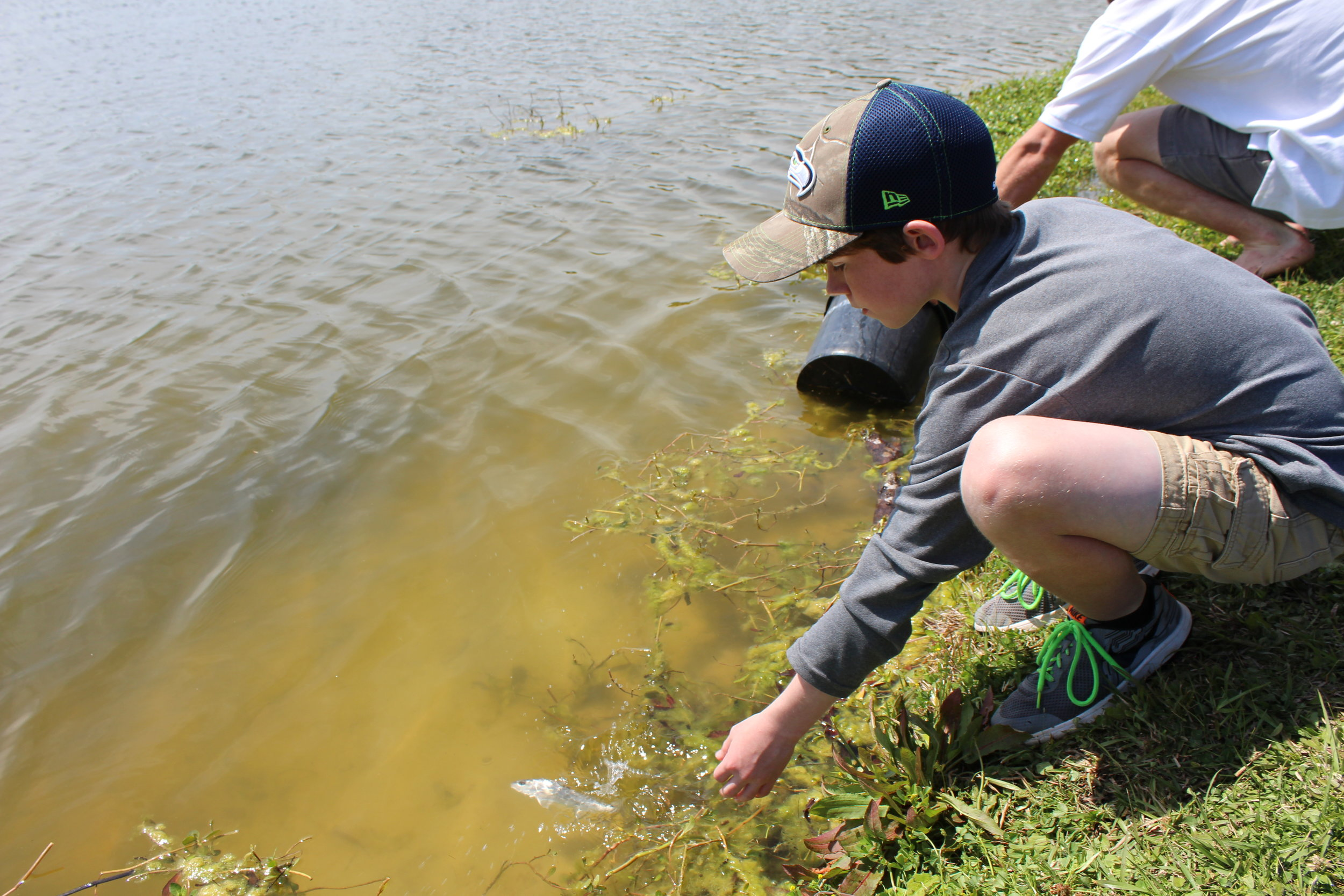 A group of Charleston-area Boy Scouts assisted with a pilot stocking of young red drum in a Charleston County park. (Photo: E. Weeks/SCDNR)