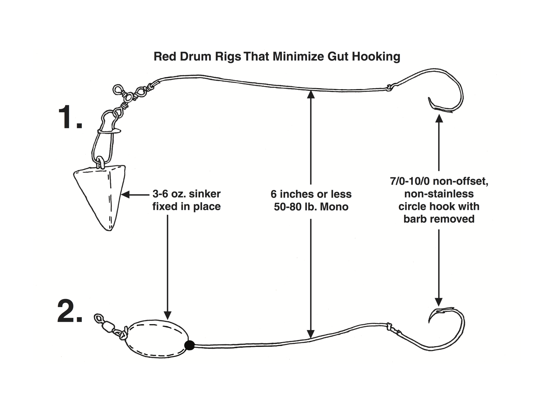 Two variations on the ideal adult red drum rig (Image: Mark Conrardy/SCDNR)