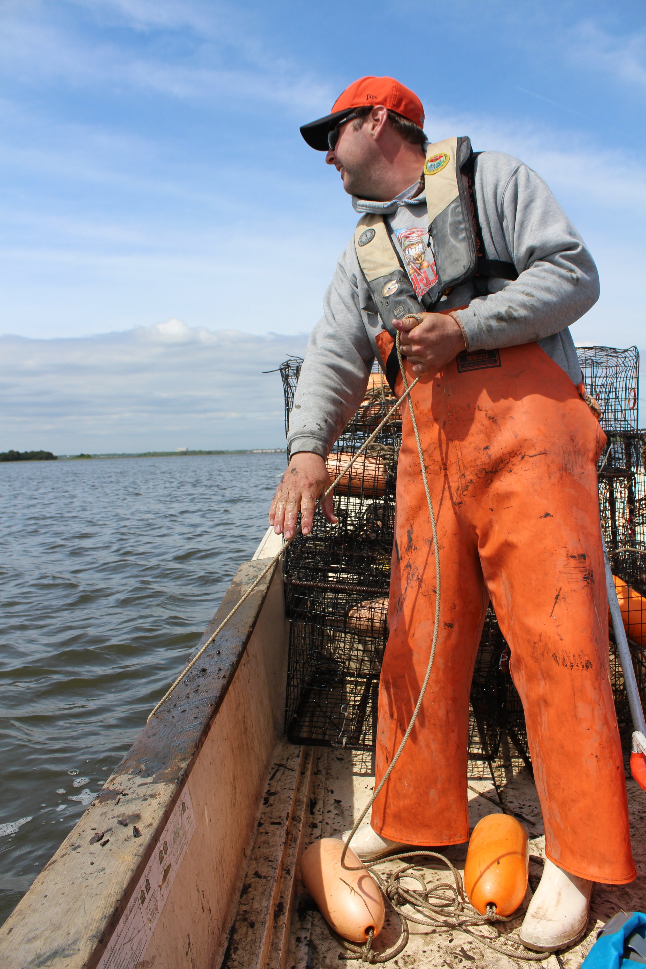 Stevie Czwartacki hauls in a crab trap on the Ashley River. The ever-fashionable necessity of foul weather gear (the orange overalls) is a subject for another blog post. (Photo: E. Weeks/SCDNR)