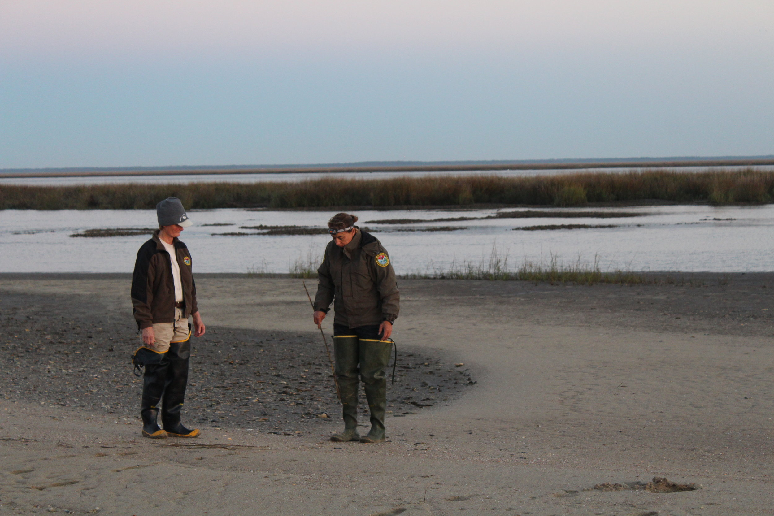 Mary Catherine Martin and Felicia Sanders (L-R) discuss the placement of a net for catching shorebirds just after dawn one cold morning in the Cape Romain National Wildlife Refuge. Both are wearing hip waders to keep warm and dry while they move back and forth between the boat and the shore. (Photo: E. Weeks/SCDNR)