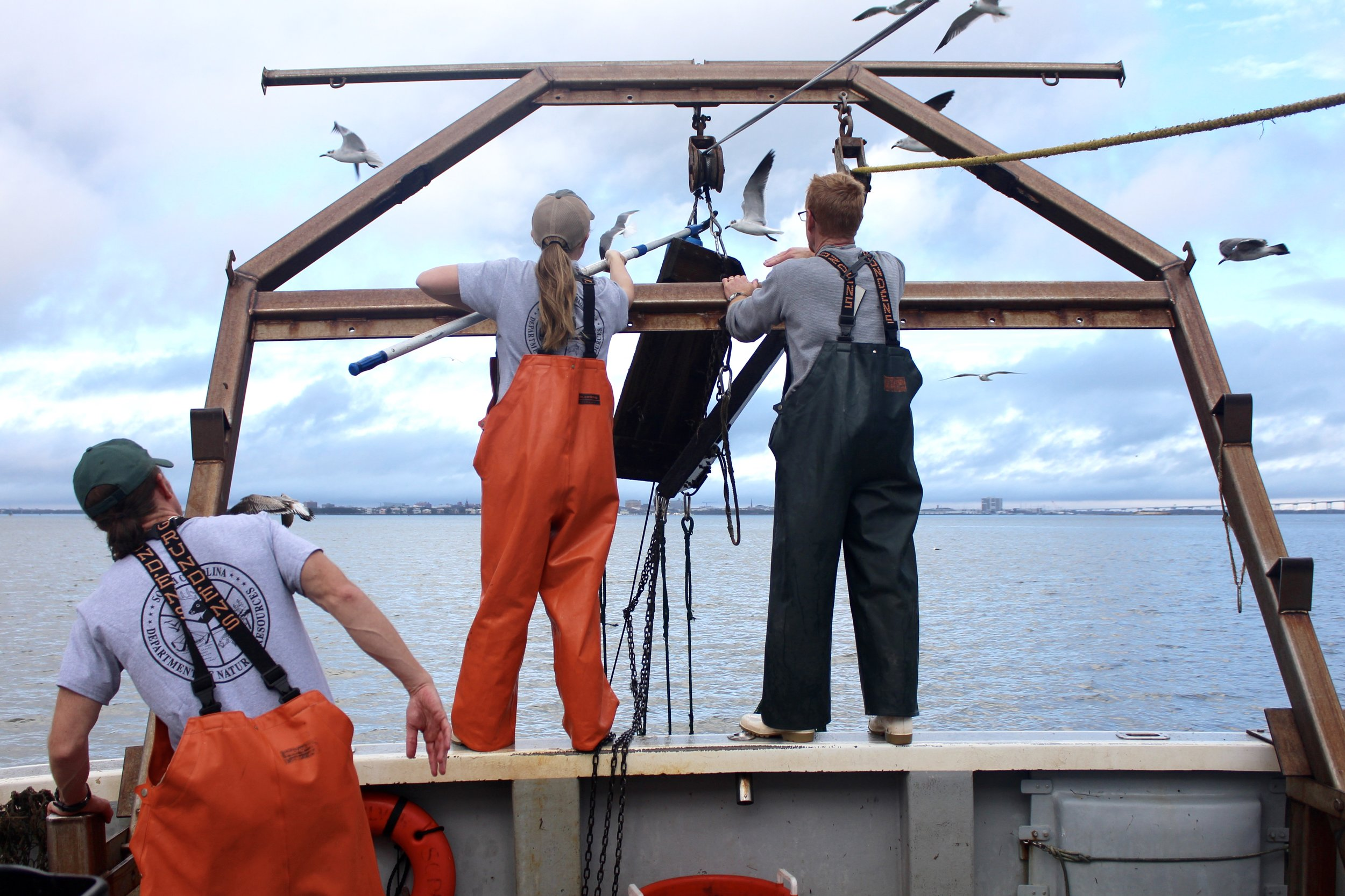 Elizabeth Gooding and Jeff Brunson carefully untangle the net their team uses to catch and study crustaceans in major waterways along the coast. Their white shrimp boats provide good traction on wet/slimy surfaces. (Photo: E. Weeks/SCDNR)