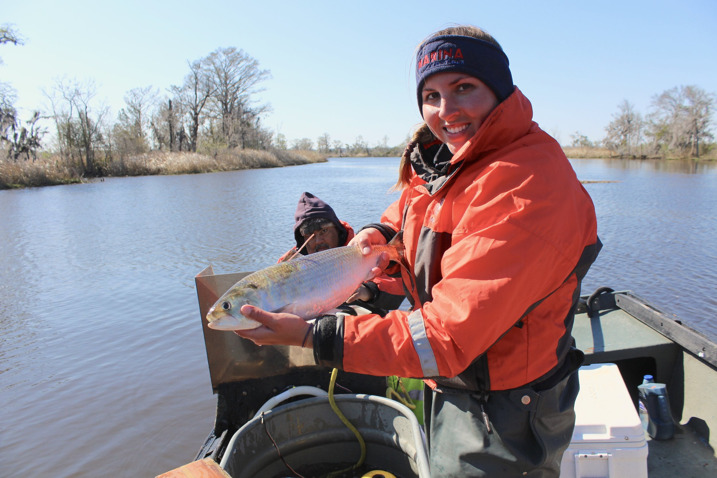 SCDNR biologist Kayla Rudnay with a female shad she's just tagged (Photo: E. Weeks/SCDNR)