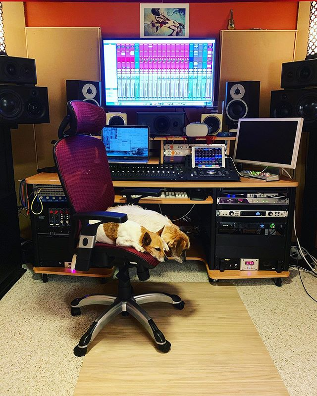 No wonder it takes them so long to setup the #mixingsession template 🐶🎶😜 . . . #studiodogs #studiovibe #musiclife #musicproducer #musicproduction #mixtips #mixingtips #mixingaudio #mixingengineer #newmusicmonday
