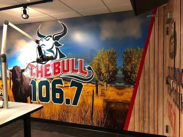 the  bull 4.jpg