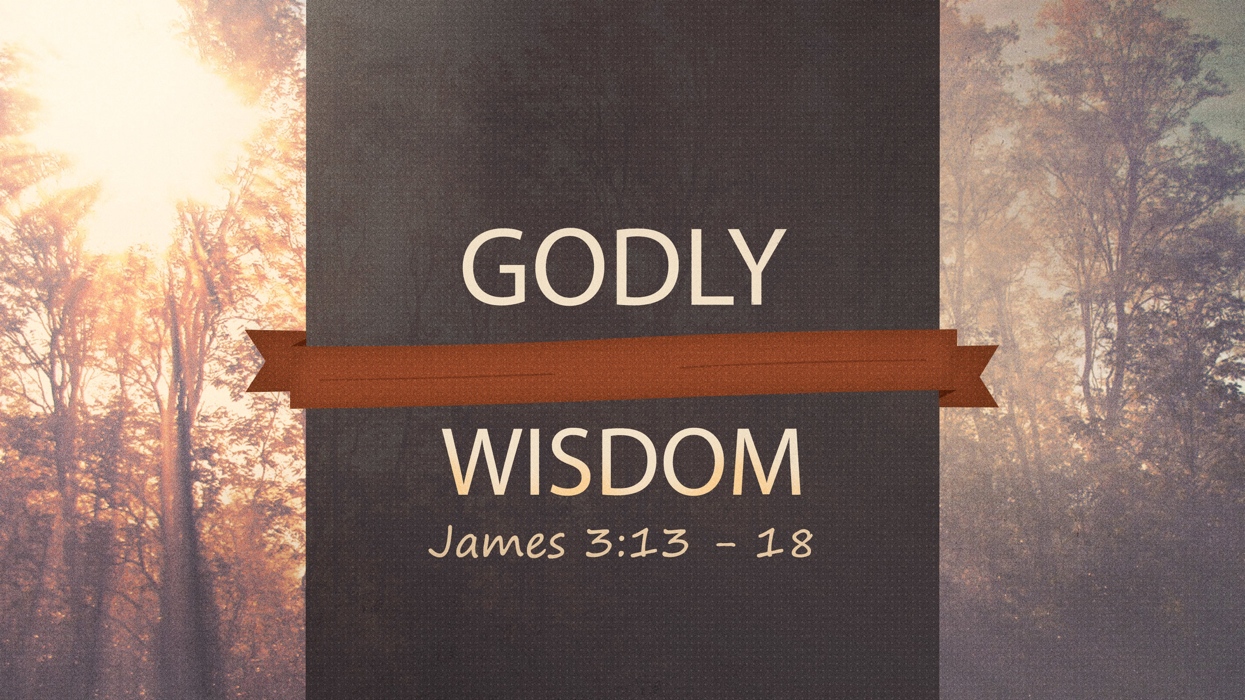 godly wisdom.jpg