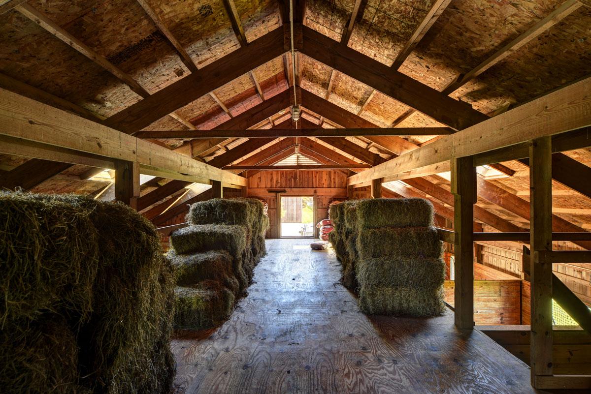 Kilmore Farm 8.jpg