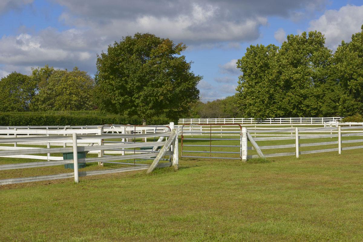 Kilmore Farm 13.jpg