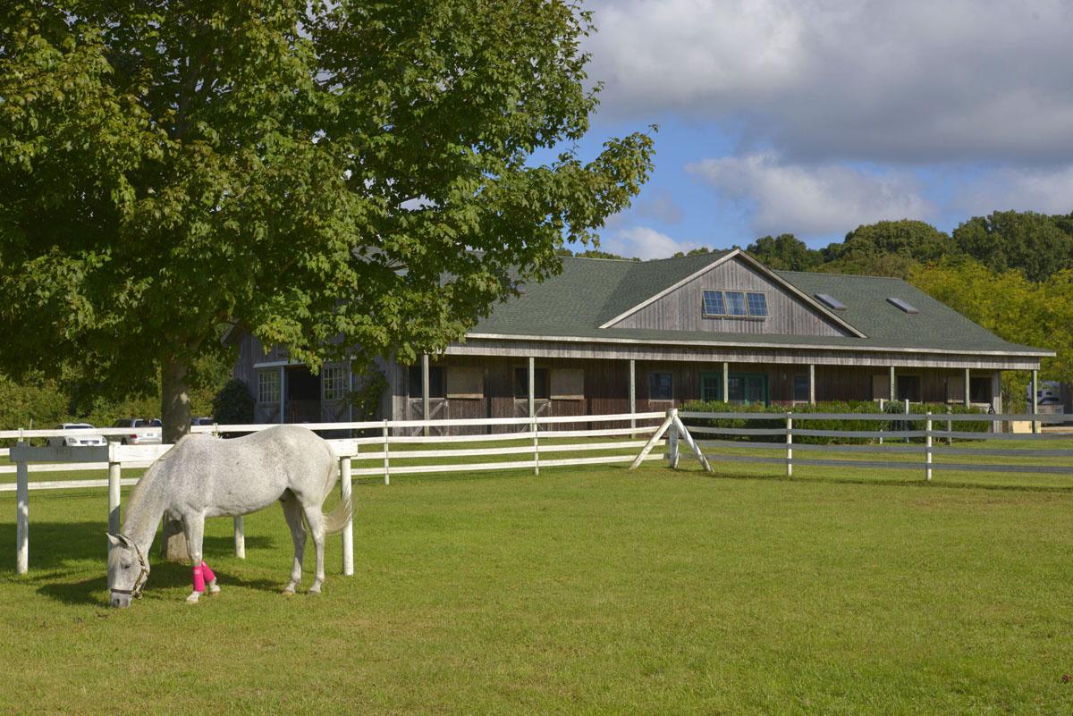 Kilmore Farm 20.jpg