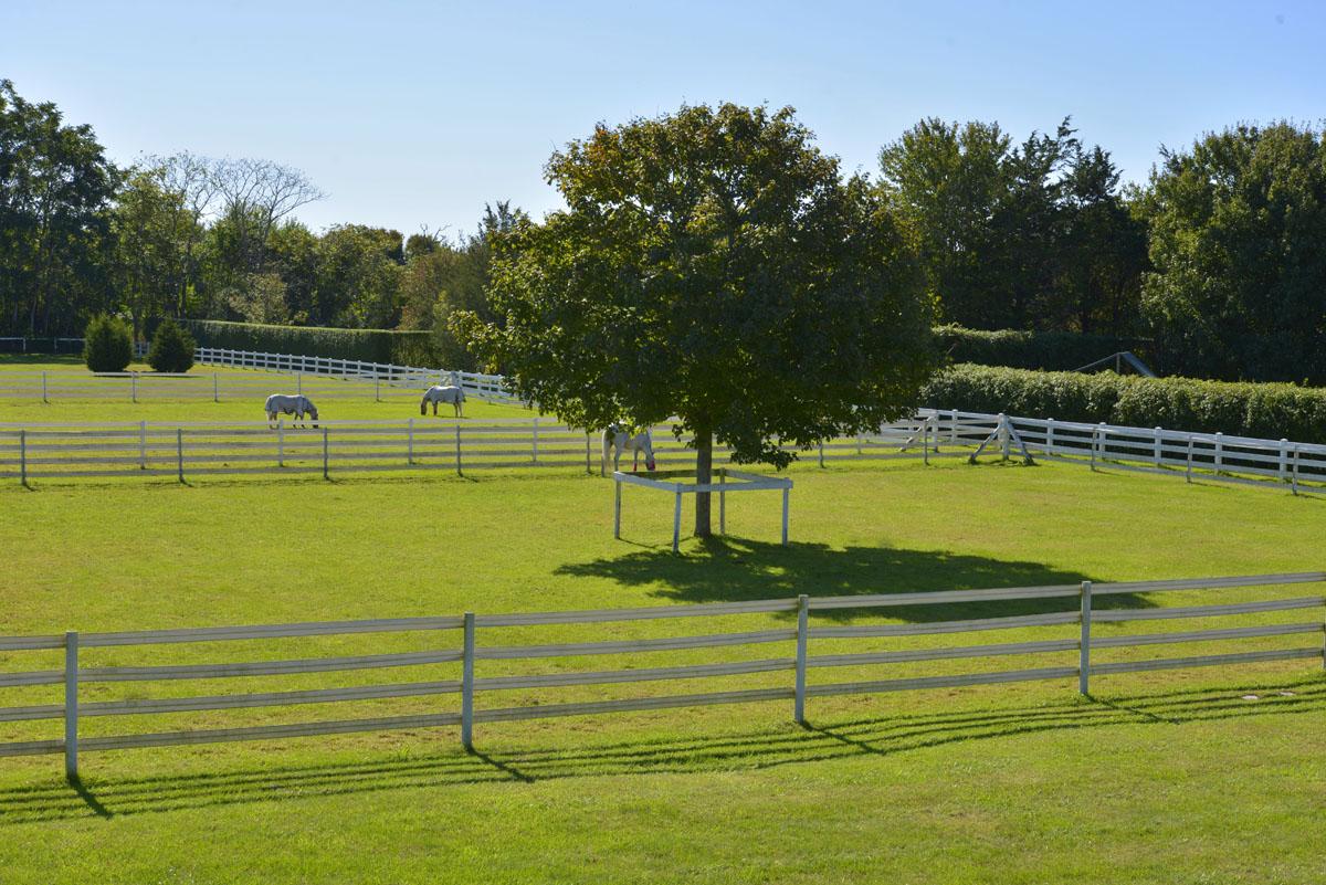 Kilmore Farm 40.jpg