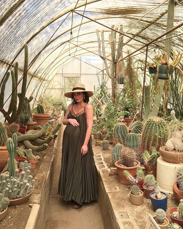 Endless cacti 🌵