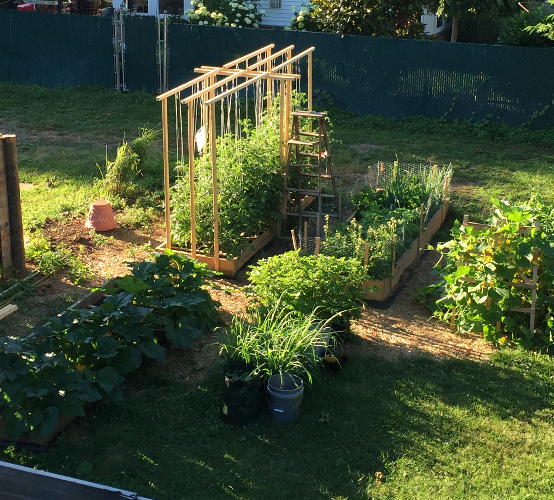 Midsummer Garden