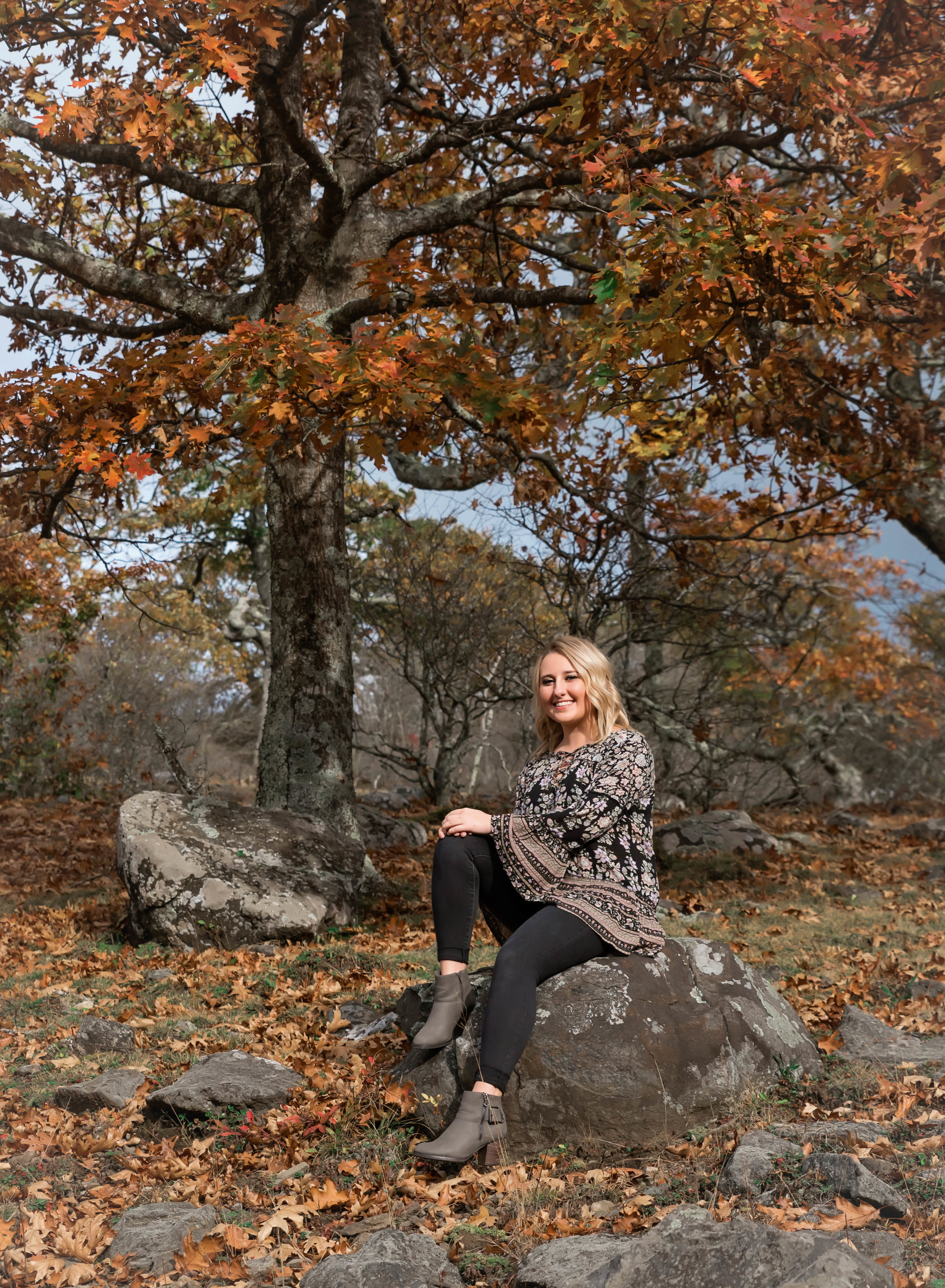 girl seating on rock with fall tree in background - Blowing Rock | Banner Elk Senior Photographer
