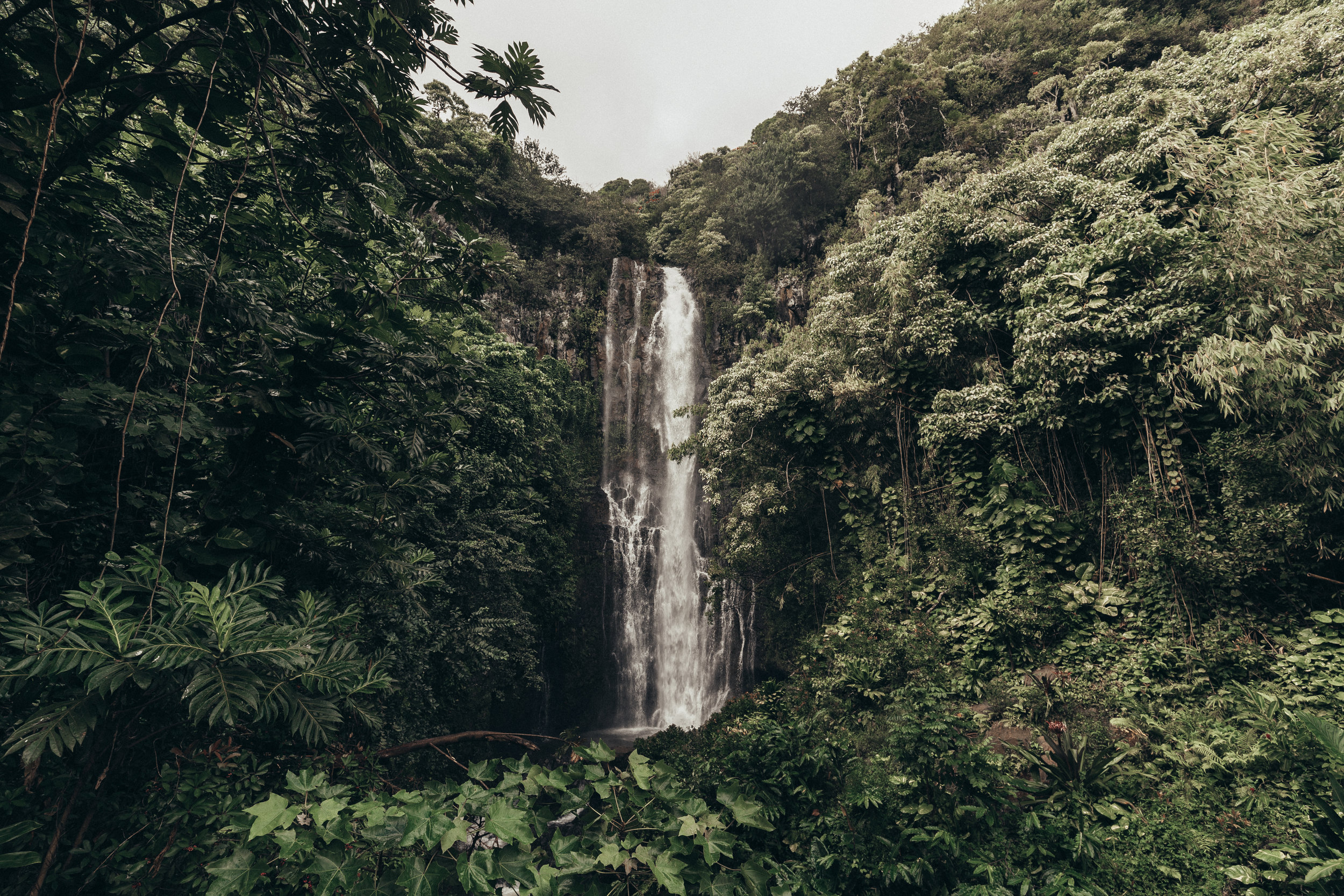 paulweaver_kauai_33