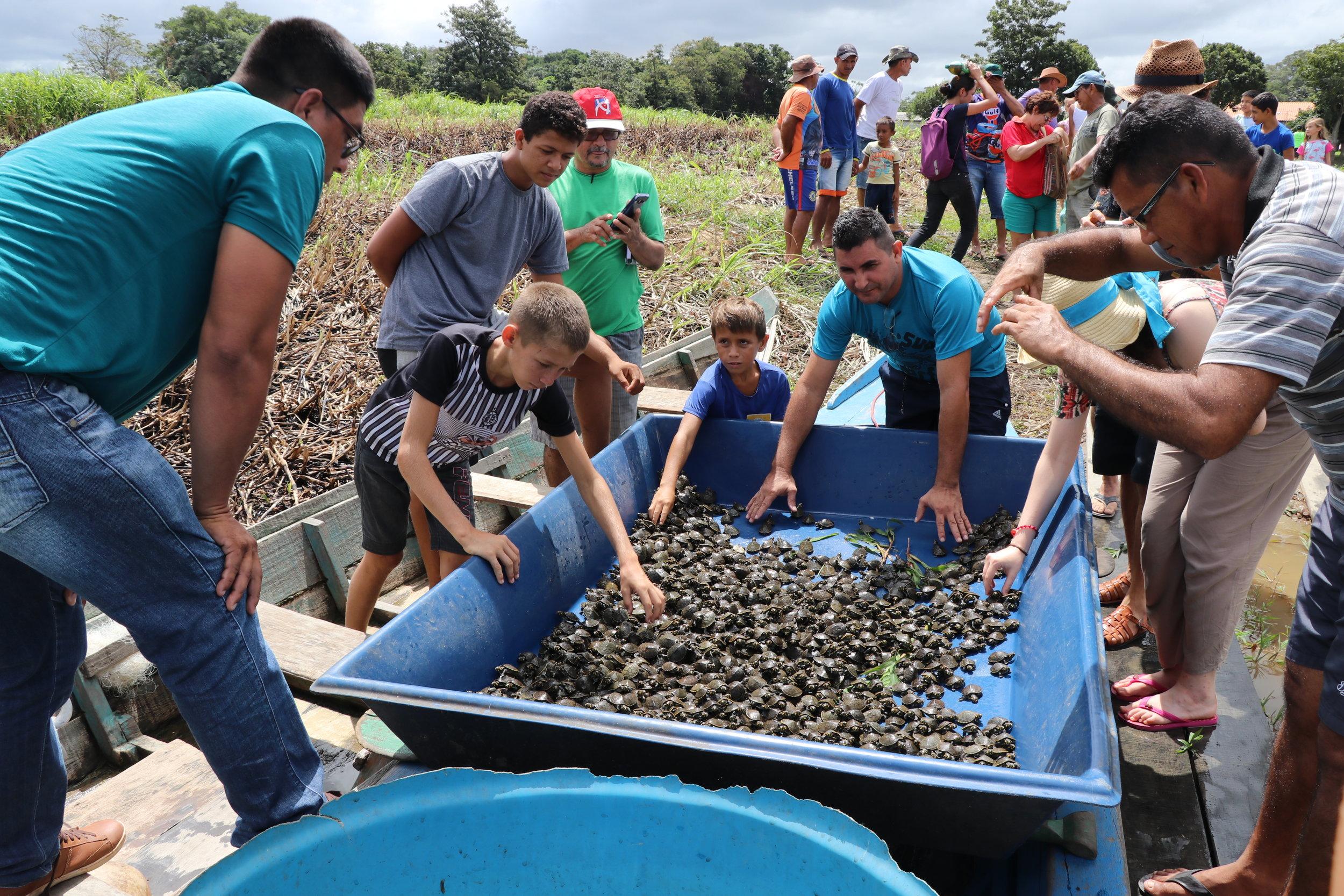 Comunidade Água preta: soltura em janeiro de 2018