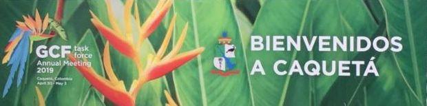 GCF banner.jpg