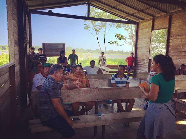 Manejo do pirarucu 🐟 • Em Alenquer - Oeste do Pará, pescadores, lideranças comunitárias, Secretaria Municipal de Meio Ambiente e Sapopema participaram da segunda reunião para definição de datas para pesca coletiva e contagem do pirarucu. As definições são importantes para manter a conservação da maior espécie de água doce do mundo 💚 • • Detalhes da informação no link na bio 📲 • • #Conservacao #pirarucu #manejodopirarucu #manejo #ecossistema #meioambiente #varzea #amazonia #Pará