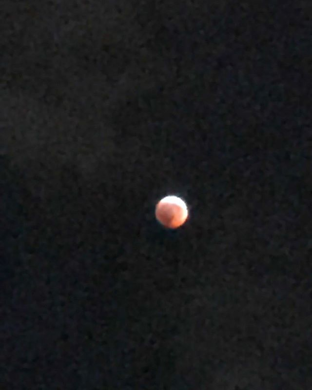 New beginnings...super blood wolf moon total eclipse