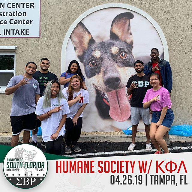 Brothers had a pawfect time making a pawsitive difference in our community with the Diamonds of @usfkappas ! A BIG thank you to the Humane Society for this opportunity to touch the hearts of Tampa's dearest animals! #ΣΒΡ #MuMecca #Service