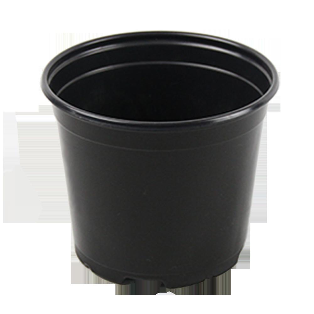 """5.5"""" Pot"""