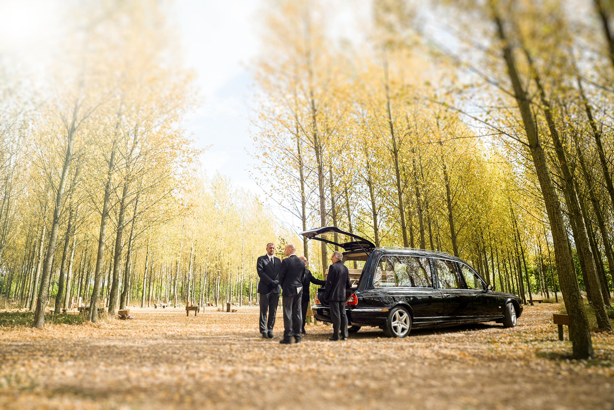 © 2018 - St Albans Woodland Burial Ground, Bedfordshire - Image by Shaun Foulds - UK  Funeral Photographers  and  Funeral Videographers .