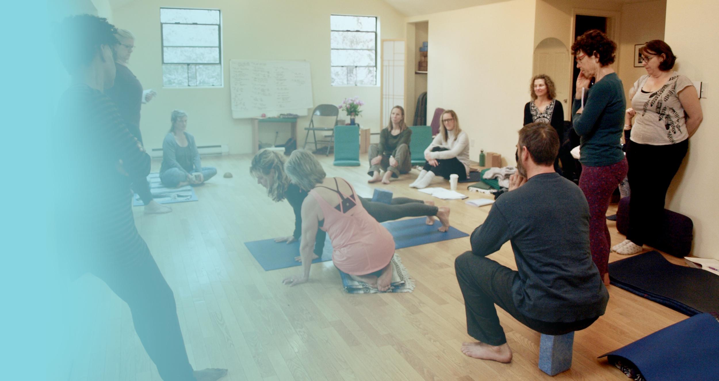 Training Programs Essential Yoga Therapy