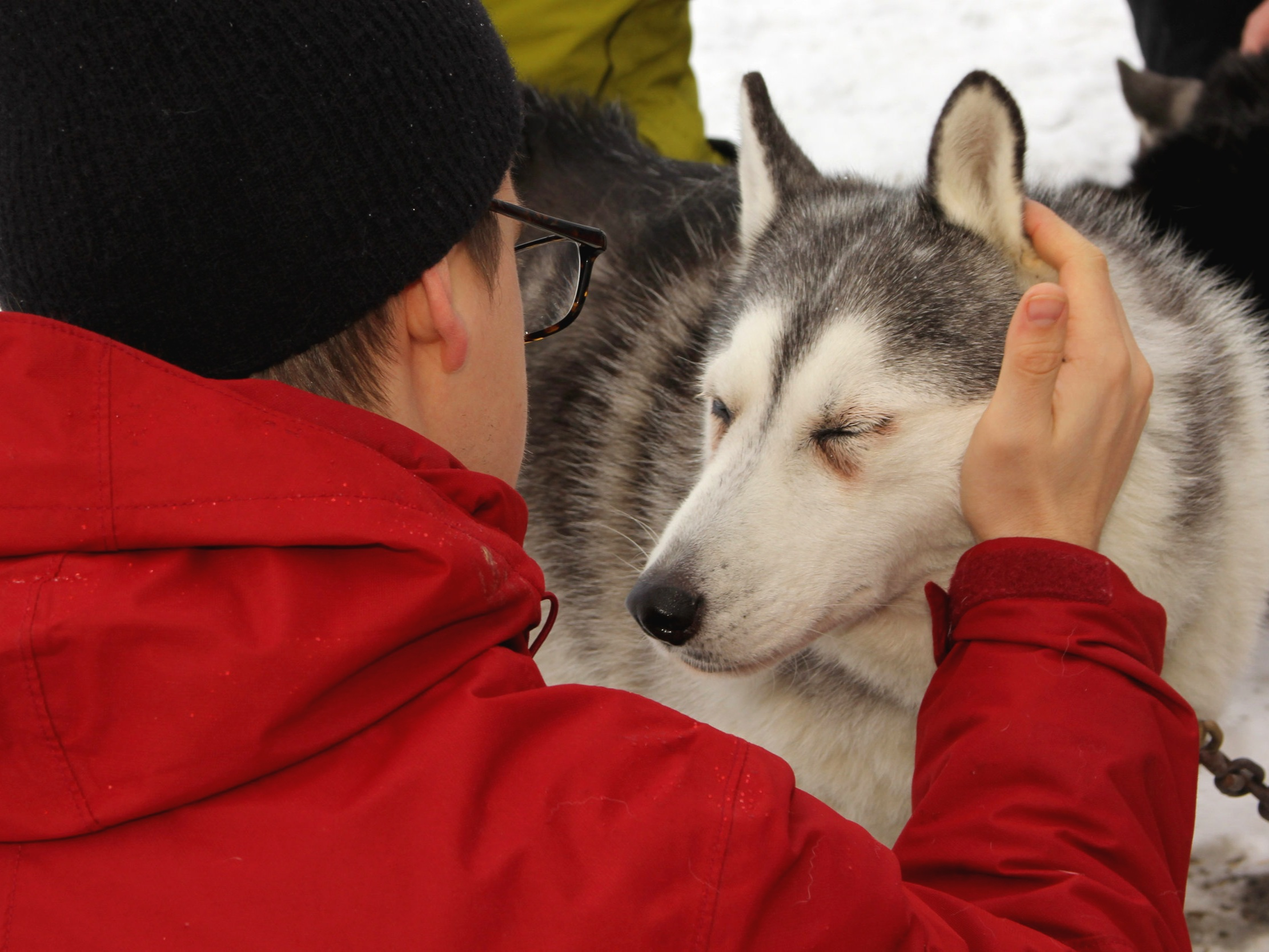 02212019DogSledding-175.jpg