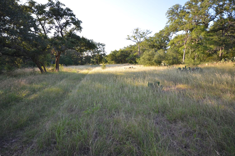 land-for-sale-new-braunfels-tx-78132-bear-creek-trail (6).jpg