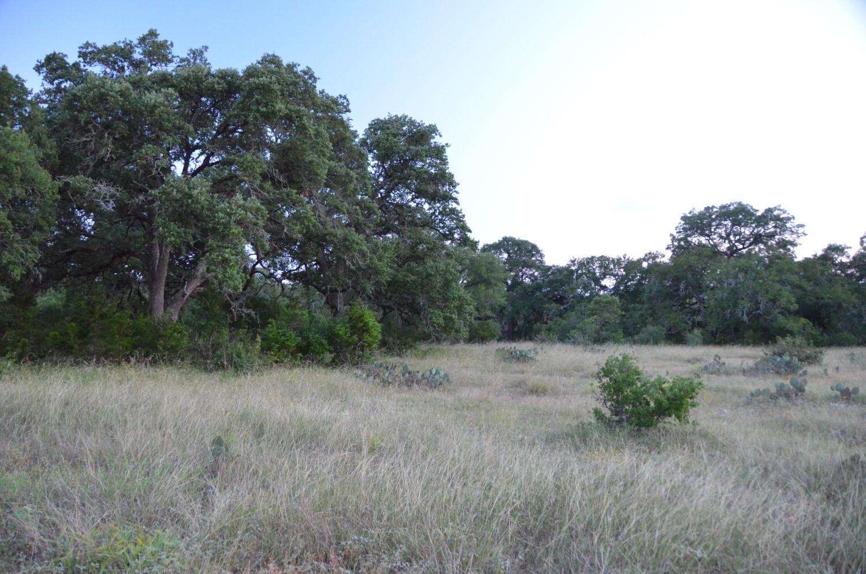 land-for-sale-new-braunfels-tx-78132-bear-creek-trail (8).jpg