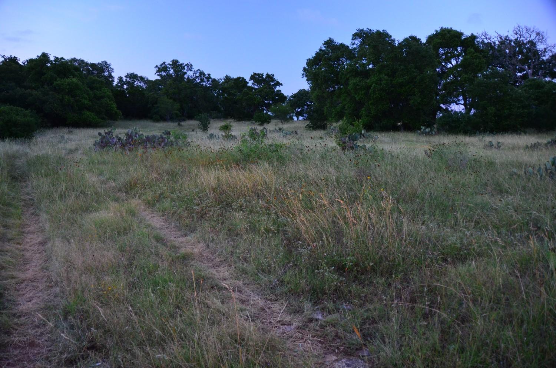 land-for-sale-new-braunfels-tx-78132-bear-creek-trail (10).jpg