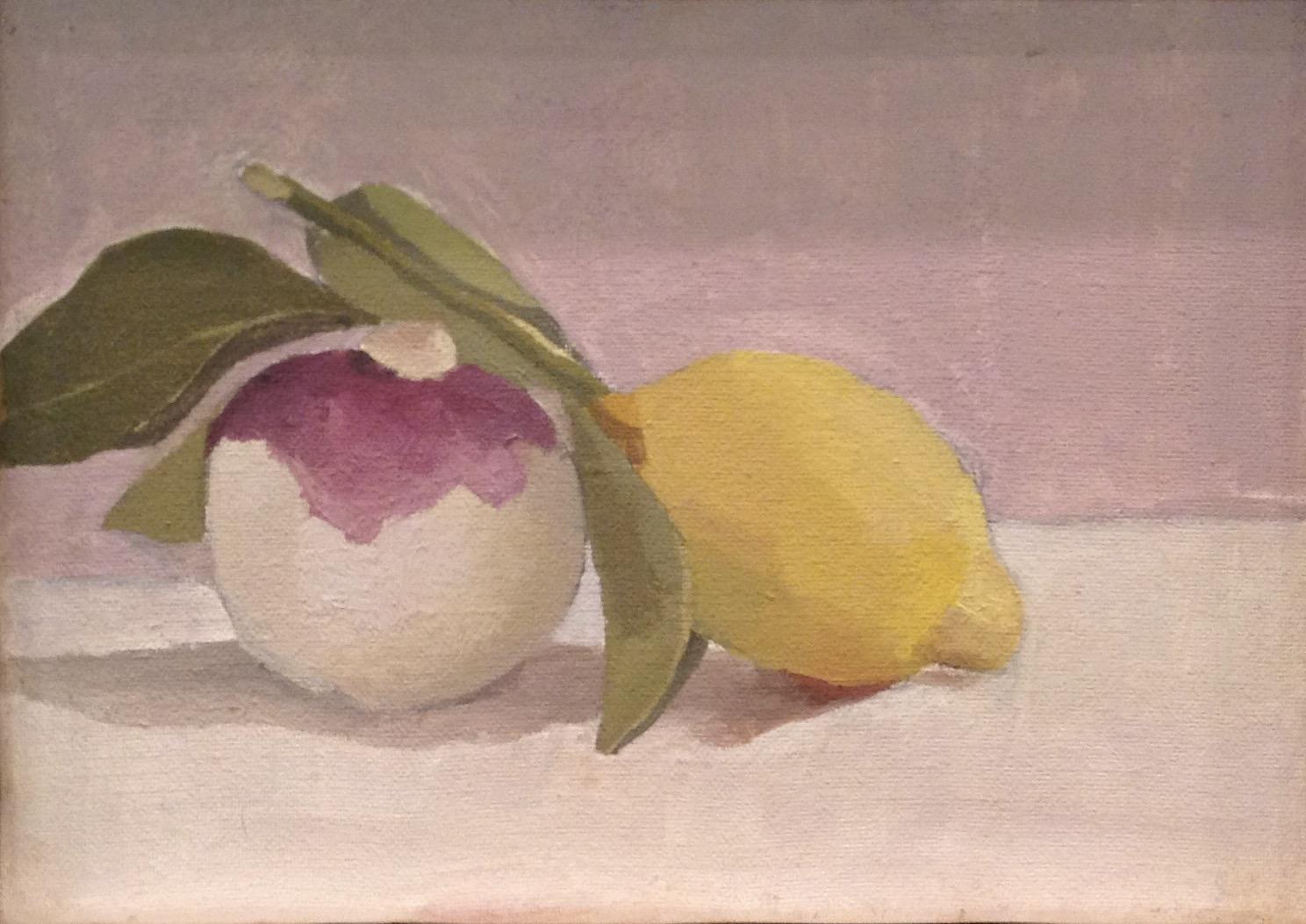 Winter Market Fruits