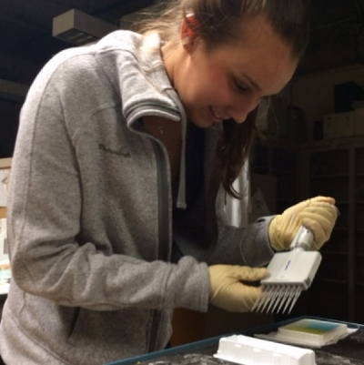 Leeann Alferness conducting a protein assay for to detect oxidative stress in mantis shrimp tissues (Scripps Institution of Oceanography, 2015).