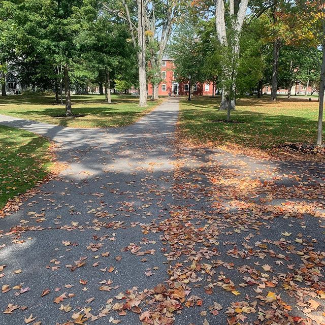 It must be required that leaves fall first on picturesque college campuses. That it's also nearly 80° is a whole other thing. 🍁😎 . #fall #autumn #summer #Maine #toosoon #foliage @bowdoincollege