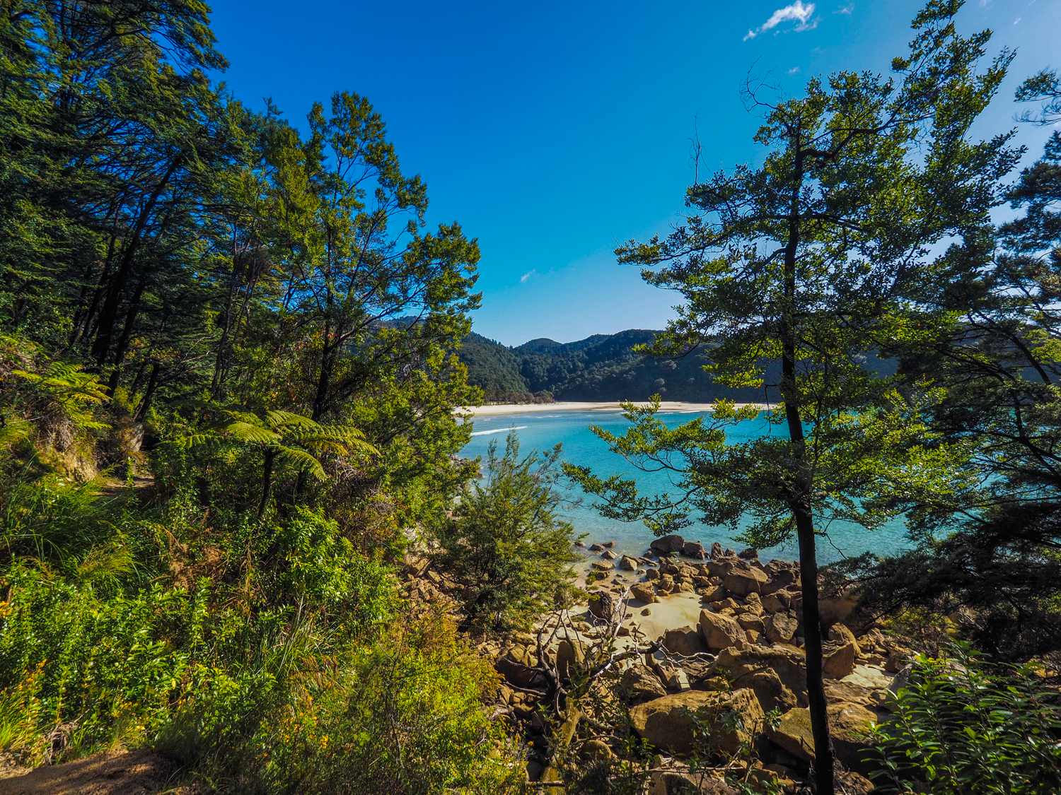 Looking back to Bark Bay (Medlands Beach) in Abel Tasman National Park, Nelson, NZ. 1/320sec, f/6.3 ISO 200