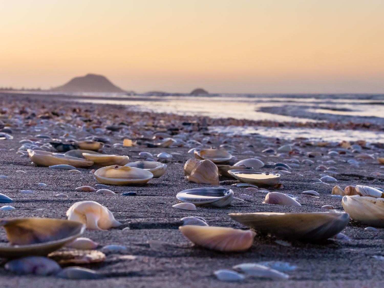 Beach lowdown. Papamoa, Bay of Plenty P9067733