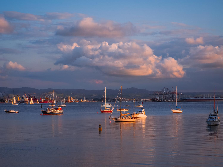 Evening calm on Tauranga Harbour. P9301526