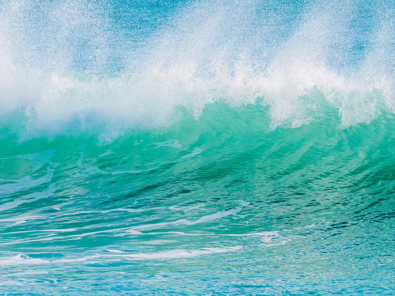 Ocean fresh. PA298210